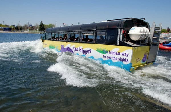 Toronto Hippo Tour Bus